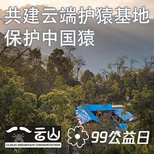 腾讯99 公益:共建云端护猿基地